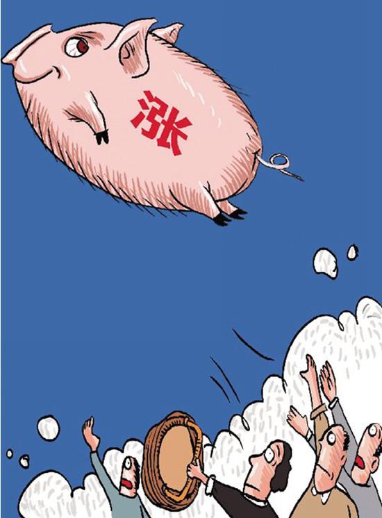 猪肉淡季疯涨 投资者:八月赌一赌,九月换路虎